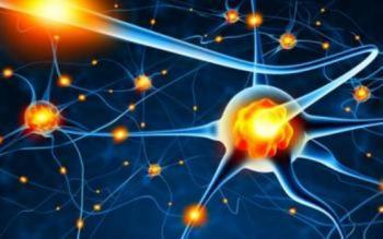 Modelarea neuronală